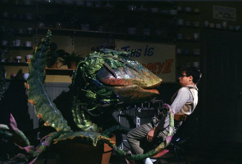 little shop of horrors, audrey 2, rick moranis, costume, halloween, horror